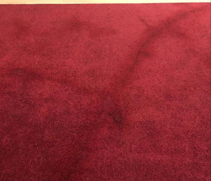 Commercial 'Red Carpet' Cleaning After Party Before