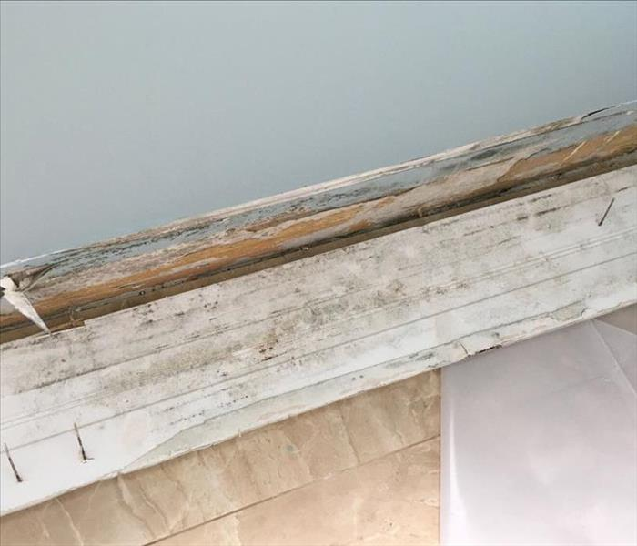 Storm Damage Causes Mold in Jacksonville Beach Condo